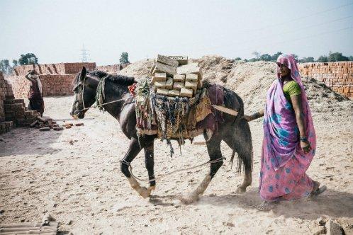 Woman accompanies her donkey through a brick kiln