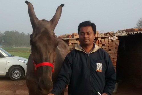 Dr Nidhish Bhardwaj