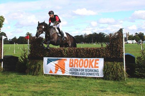 Osberton Brooke jump