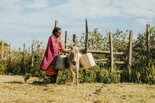 Woman and donkey in Kenya