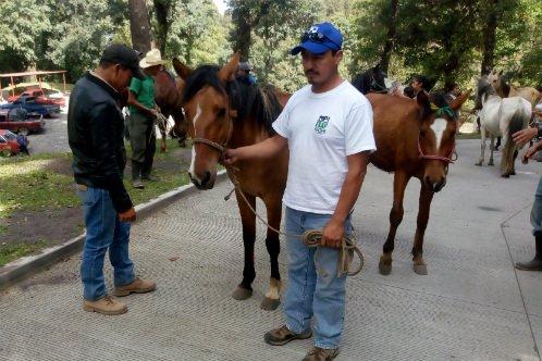 Guatemala emergency operation