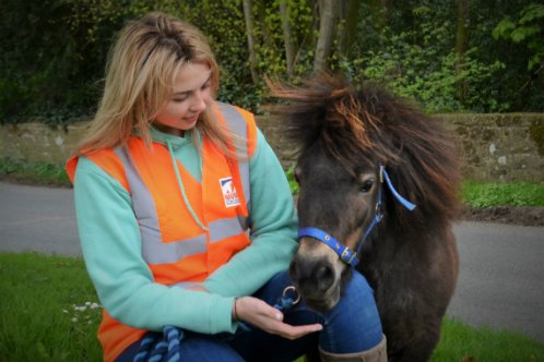 Hannah Russell and her mini Shetland Little Alf