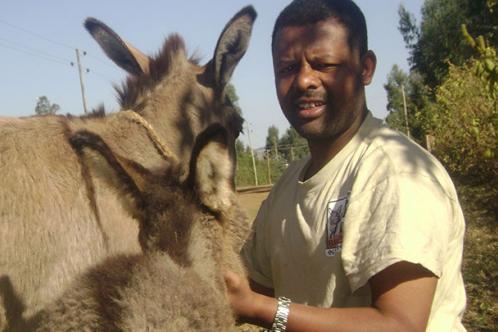 Dr. Alemayehu Hailmariam