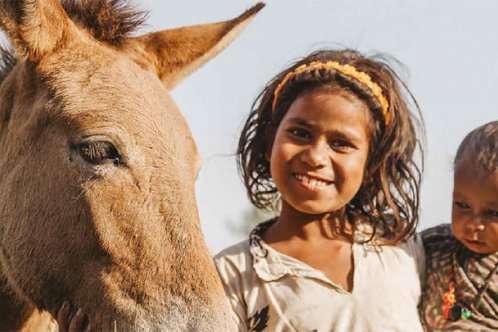 A young girl from Qalandar camp with a foal