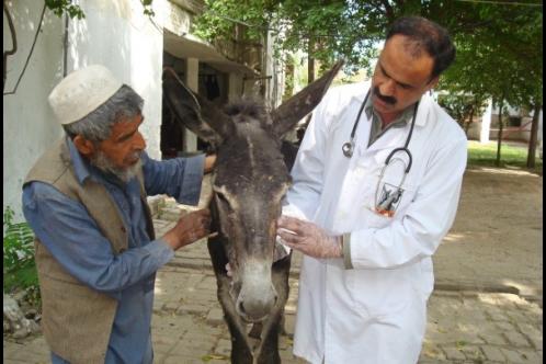 Dr Muhammad Javaid Khan