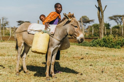 Mother and child standing with donkey in Kenya