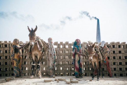 Brick kiln donkeys