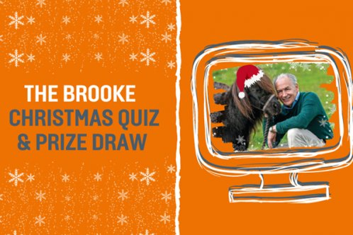 Brooke Christmas Quiz