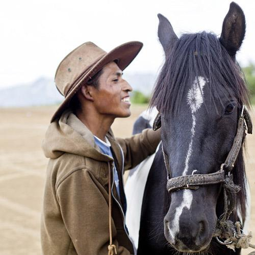An owner with his horse