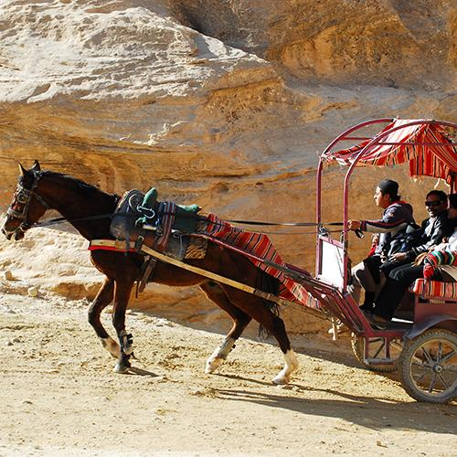 A horse pulling a carriage in Petra