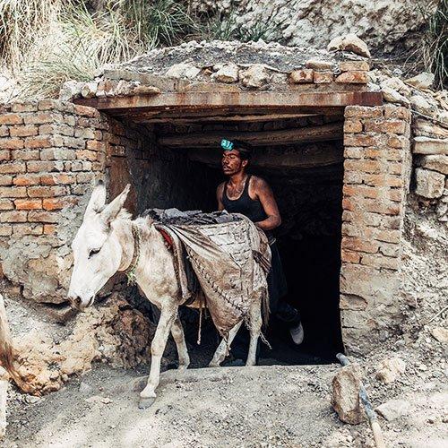 Brick kiln donkey in India