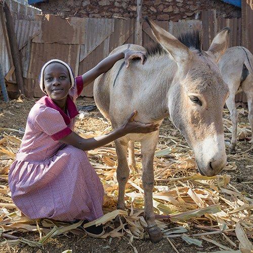 Girl and donkey in Kenya