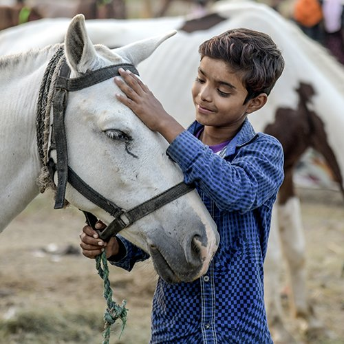 An Indian boy and his 'favourite horse' Baadal