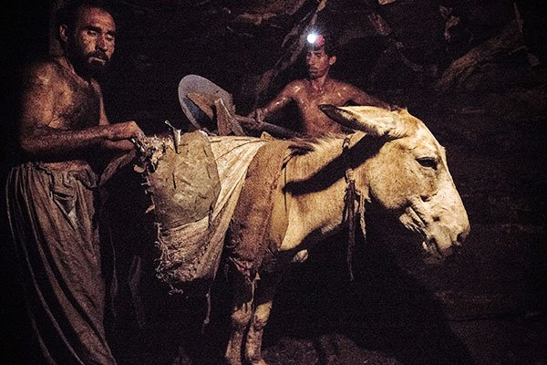 Animals and owners working in a coal mine