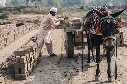 A horse and owner working at a brick kiln