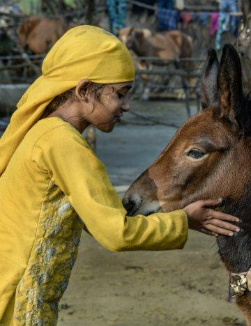 Girl and foal