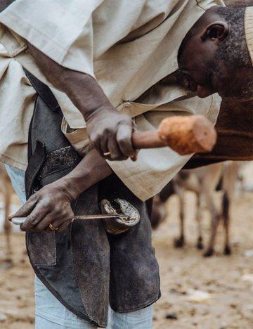 Farrier in Senegal