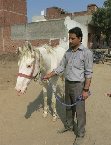Naseer with an equine in India