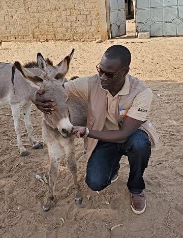 Dr Mactar Seck and donkey