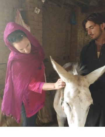 Erin looking at measures an equid owner adopted as a result of participating in Brooke trainings to prevent his equipment from causing wounds to his animal