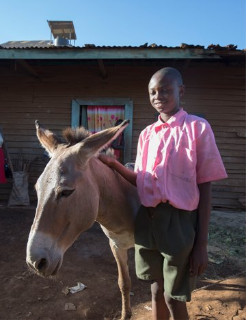 A boy and his donkey