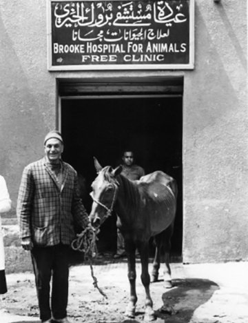 Man outside Brooke Cairo hospital