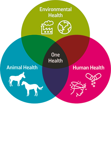 One Health infographic