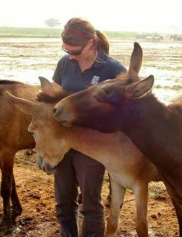Kimberly Wells surrounded by donkeys