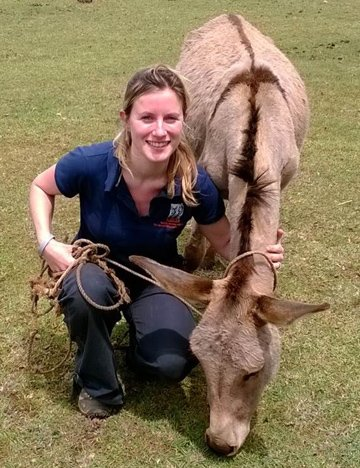 Dr. Laura Skippen in the field with a donkey