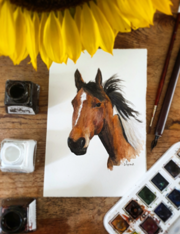 Watercolour portrait of a rescue horse by Kate